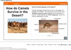 How do camels survive in the desert? | Recurso educativo 42152