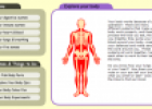 Explore your body | Recurso educativo 75537